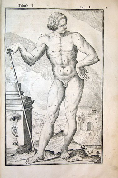 Julius Casserius's engraving of the human body