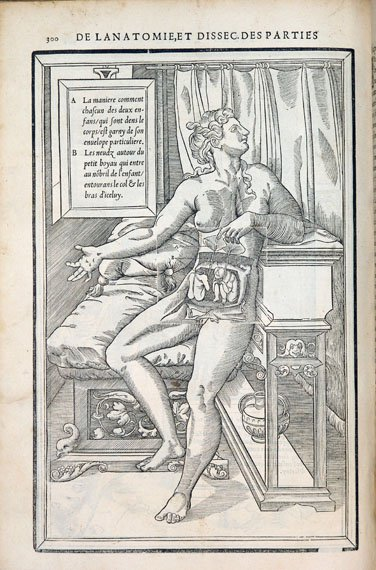 Woodblock example that has both a pornographic and medical function