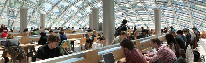 Students study in Mansueto Grand Reading Room