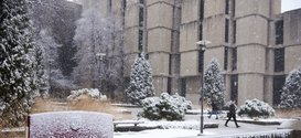 Regenstein-snow_7767--photobyJoelWintermantle-med.jpg