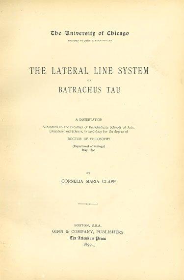 Cornelia rauh dissertation